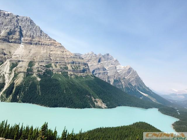 Peyto Lake and Bow Summit